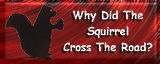 Visit the Squirrel Hazing page, and experience the 'Untold Story'!!